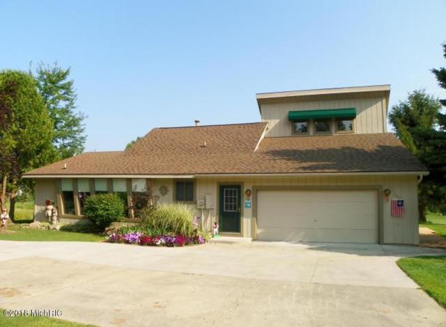 247 Peterman Drive, Crystal, MI 48818 (MLS #18016749) :: Carlson Realtors & Development