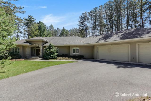 3571 Meadowood Trails Drive SE, Grand Rapids, MI 49546 (MLS #18016927) :: 42 North Realty Group