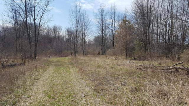 1623 Boyer Road, Fenwick, MI 48834 (MLS #18017140) :: JH Realty Partners