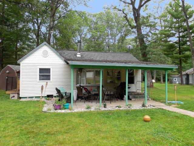 2421 W Wolf Lake Boulevard, Baldwin, MI 49304 (MLS #18017320) :: Carlson Realtors & Development