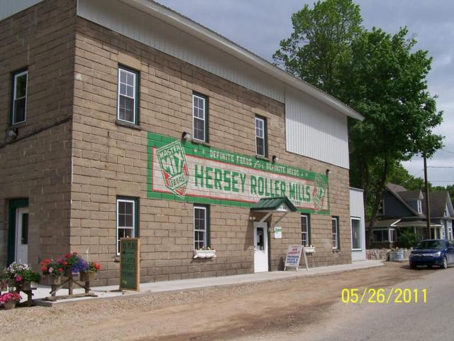110 N Main Street, Hersey, MI 49639 (MLS #18017321) :: 42 North Realty Group