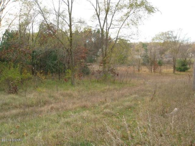 Holton Duck Lake, Holton, MI 49425 (MLS #18018150) :: Carlson Realtors & Development