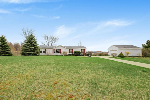 521 E Polk Road, Hart, MI 49420 (MLS #18018767) :: Carlson Realtors & Development