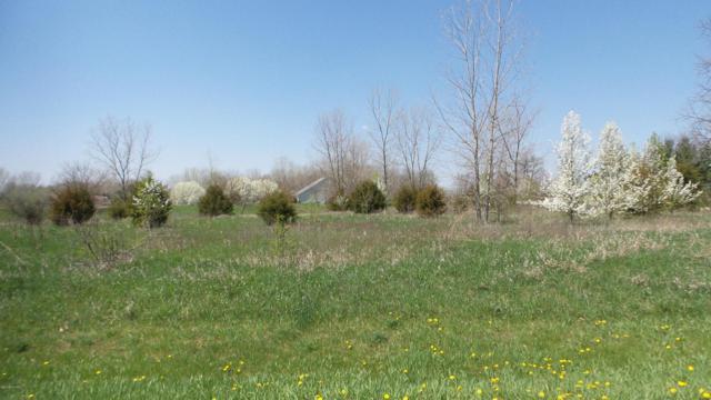 13485 Rivercrest Drive, White Pigeon, MI 49099 (MLS #18019262) :: Carlson Realtors & Development