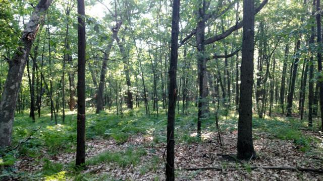 814 Wildlife Trail, Belding, MI 48809 (MLS #18019283) :: Deb Stevenson Group - Greenridge Realty