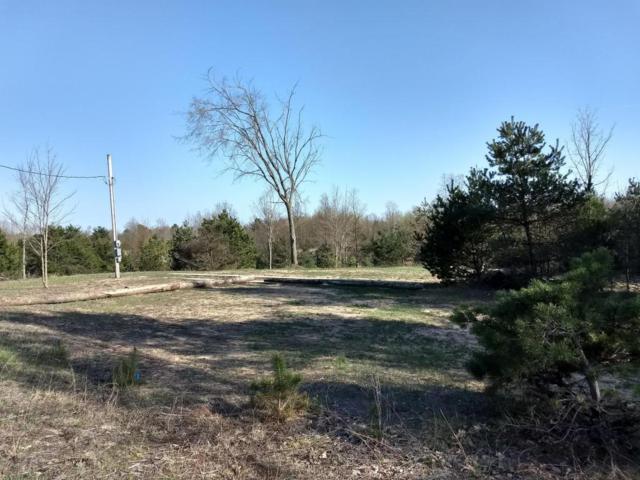 3613 E Baseline Road, Shelby, MI 49455 (MLS #18019332) :: Carlson Realtors & Development
