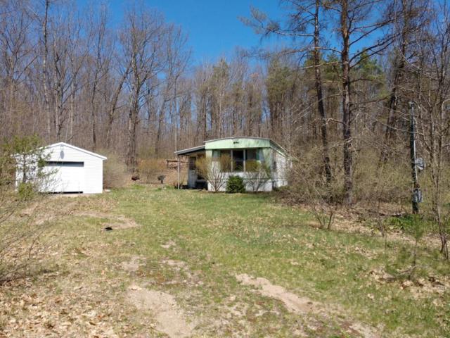 7400 E Pierce Road, Hesperia, MI 49421 (MLS #18019386) :: Carlson Realtors & Development