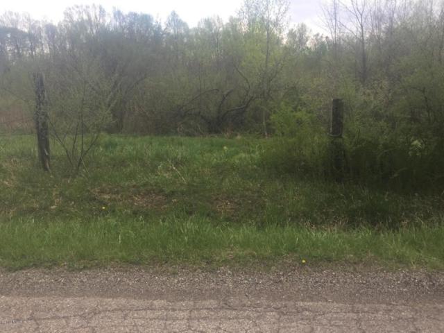 Krueger Road, Three Oaks, MI 49128 (MLS #18019719) :: 42 North Realty Group