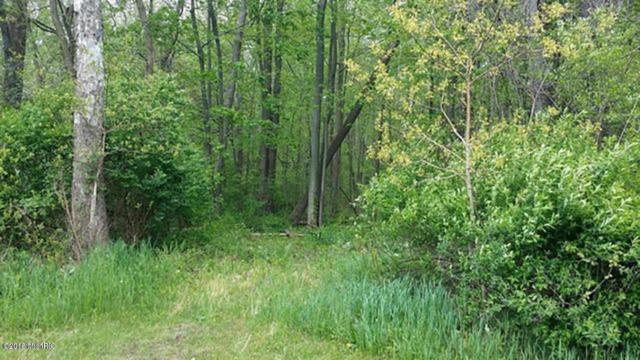841 Geneva Drive, Wayland, MI 49348 (MLS #18019769) :: Deb Stevenson Group - Greenridge Realty