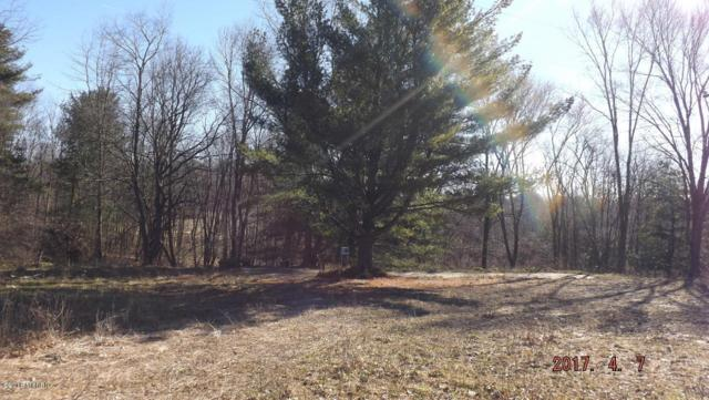 4311 S Youngman Road, Greenville, MI 48838 (MLS #18019894) :: JH Realty Partners