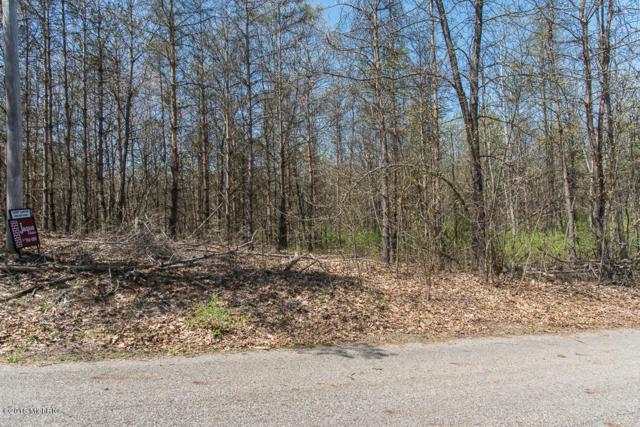 002 Yawger Road, Battle Creek, MI 49017 (MLS #18019926) :: Carlson Realtors & Development