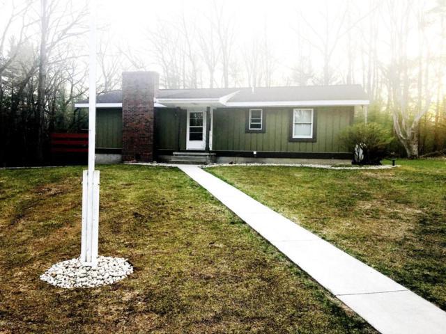 10469 E 40th Street, Reed City, MI 49677 (MLS #18019990) :: Carlson Realtors & Development