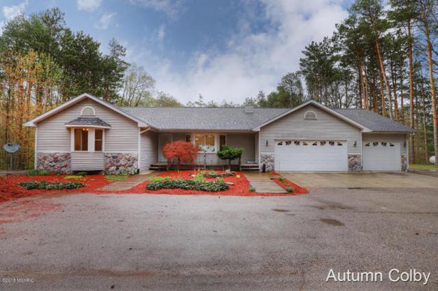 12480 Heintzelman Road NE, Cedar Springs, MI 49319 (MLS #18020578) :: Carlson Realtors & Development