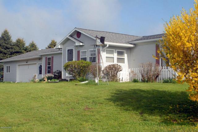 1452 W Monroe Road, Hart, MI 49420 (MLS #18020785) :: 42 North Realty Group