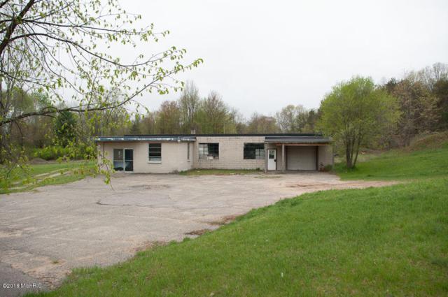 485 N Muenscher Street, Howard City, MI 49329 (MLS #18021062) :: Carlson Realtors & Development