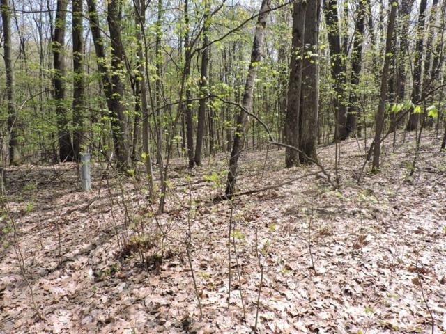 Lot 213 Alps Drive, Reed City, MI 49677 (MLS #18021064) :: 42 North Realty Group