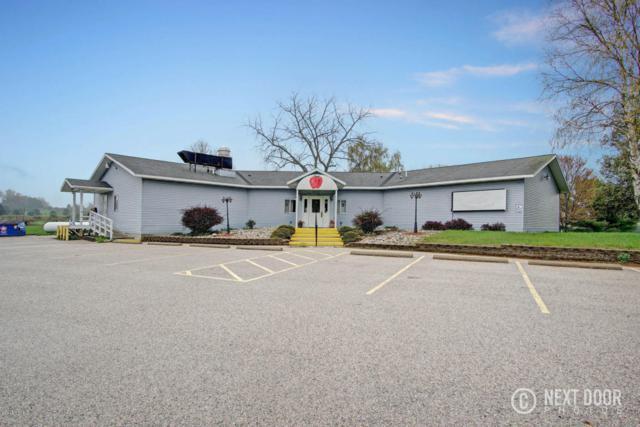 3666 S Scenic Drive, Shelby, MI 49455 (MLS #18021154) :: Deb Stevenson Group - Greenridge Realty