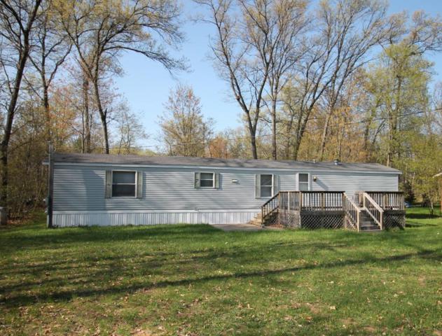 3088 Buck Drive, Baldwin, MI 49304 (MLS #18021228) :: Carlson Realtors & Development
