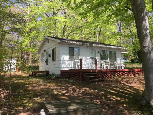 3136 Pawnee Trail, New Era, MI 49446 (MLS #18021309) :: Carlson Realtors & Development