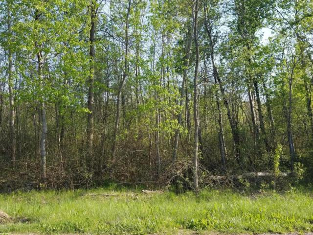 County Road 384, South Haven, MI 49090 (MLS #18021394) :: 42 North Realty Group