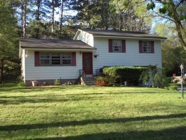 13507 Cone Street, Nunica, MI 49448 (MLS #18021404) :: Carlson Realtors & Development