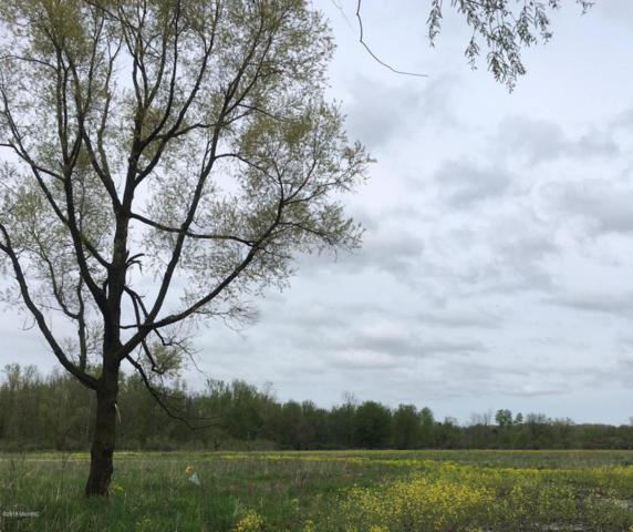 110 acres 42nd Street, Paw Paw, MI 49079 (MLS #18021573) :: Carlson Realtors & Development