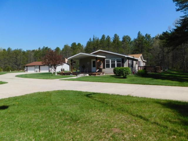 3633 S Spruce Avenue, White Cloud, MI 49349 (MLS #18021772) :: Deb Stevenson Group - Greenridge Realty