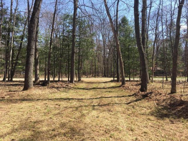 N Astor Drive Road Parcel C, Baldwin, MI 49304 (MLS #18021870) :: 42 North Realty Group