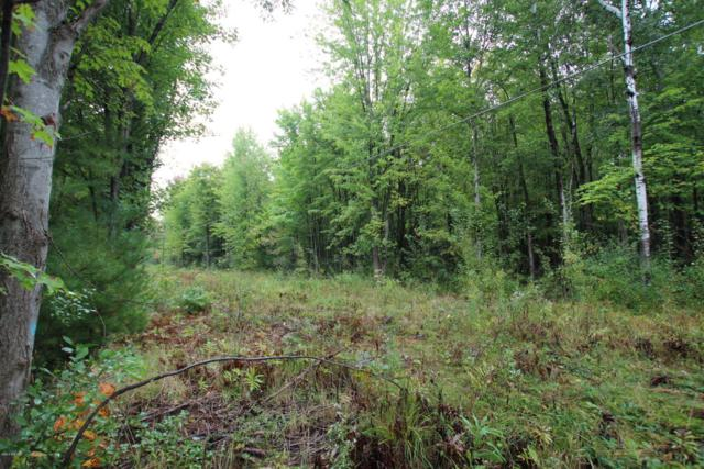 Lot A Staple Road Lot A, Twin Lake, MI 49457 (MLS #18021950) :: Deb Stevenson Group - Greenridge Realty