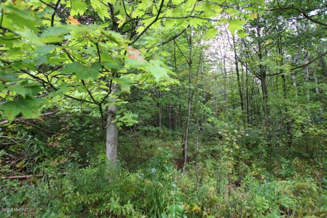 Lot B Staple Road Lot B, Twin Lake, MI 49457 (MLS #18021952) :: Deb Stevenson Group - Greenridge Realty