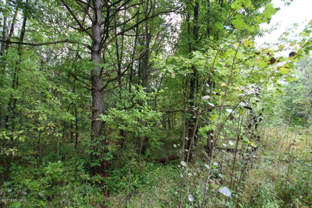 Lot C Staple Road Lot C, Twin Lake, MI 49457 (MLS #18021955) :: Deb Stevenson Group - Greenridge Realty
