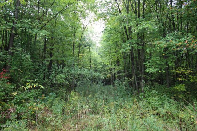 Lot D Staple Road Lot D, Twin Lake, MI 49457 (MLS #18021957) :: Deb Stevenson Group - Greenridge Realty