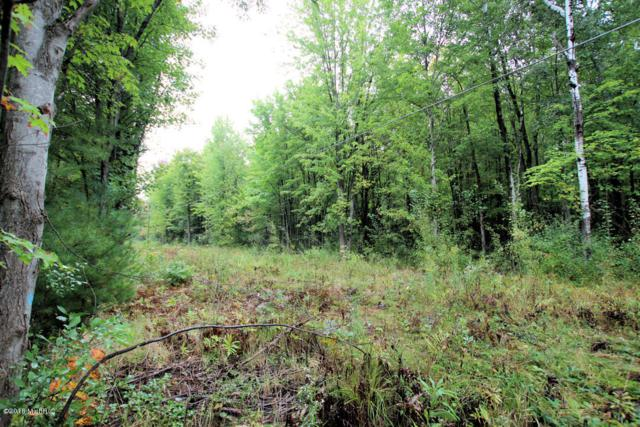 Lot A-F Staple Road Lot A, Twin Lake, MI 49457 (MLS #18021996) :: Deb Stevenson Group - Greenridge Realty