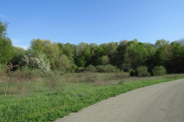 Lot 3 Valley Vista Drive, Lowell, MI 49331 (MLS #18022018) :: 42 North Realty Group
