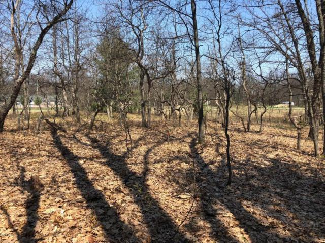 Fair Oaks Estates - Lot 164, Walhalla, MI 49458 (MLS #18022124) :: Deb Stevenson Group - Greenridge Realty