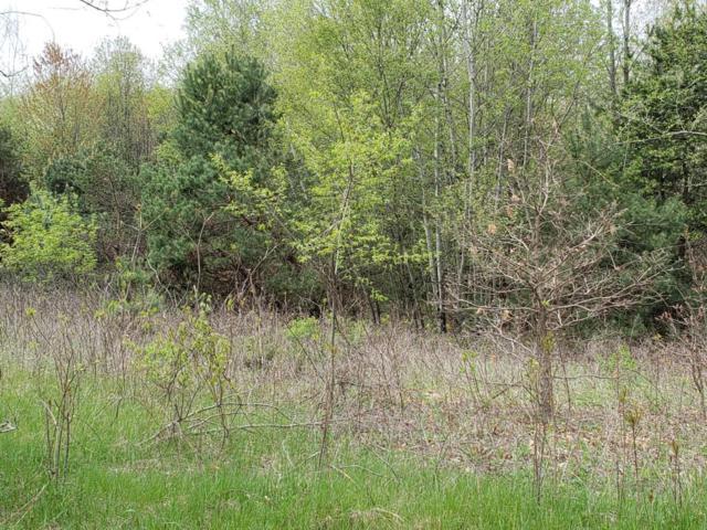 8873 Alpine Avenue NW, Sparta, MI 49345 (MLS #18022231) :: Deb Stevenson Group - Greenridge Realty