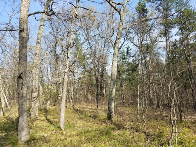 Koenig Road, Free Soil, MI 49411 (MLS #18022454) :: Carlson Realtors & Development