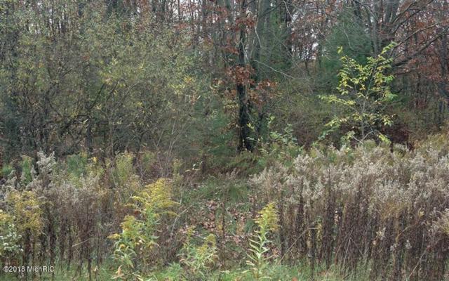 12269 NE Stacey Woods Drive NE, Greenville, MI 48838 (MLS #18022485) :: Carlson Realtors & Development