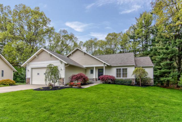 15079 Waterleaf Court, Spring Lake, MI 49456 (MLS #18022490) :: Carlson Realtors & Development