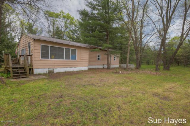 1084 S Oak Avenue, White Cloud, MI 49349 (MLS #18022519) :: Deb Stevenson Group - Greenridge Realty