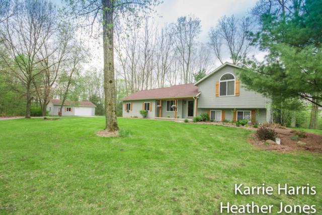 6569 White Pine Drive, Greenville, MI 48838 (MLS #18022638) :: Carlson Realtors & Development