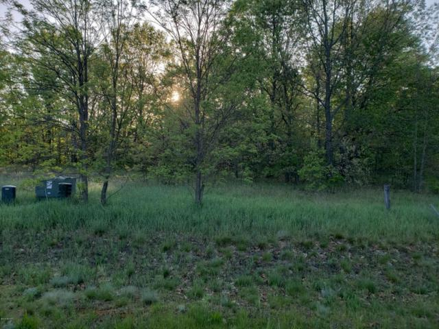 13 South Branch, Hesperia, MI 49421 (MLS #18023160) :: 42 North Realty Group