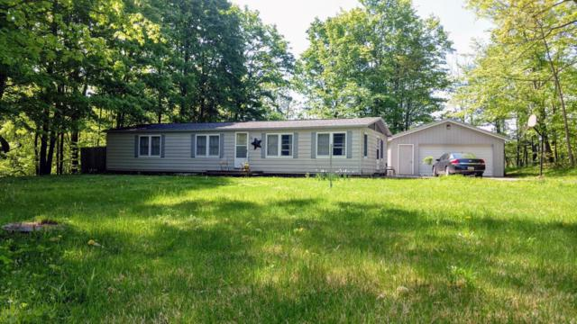 8947 Lyman Road, Kaleva, MI 49645 (MLS #18023195) :: Carlson Realtors & Development