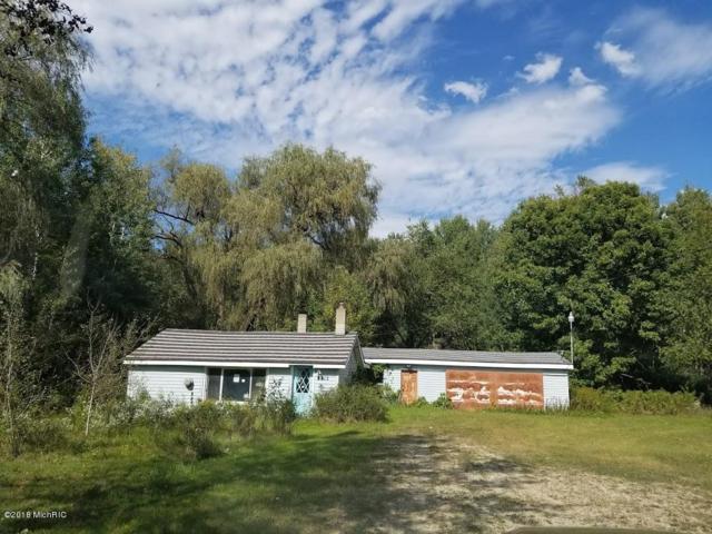 2815 W 12th Street, White Cloud, MI 49349 (MLS #18023238) :: Carlson Realtors & Development