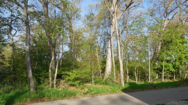 11584 Marquette Drive, New Buffalo, MI 49117 (MLS #18023266) :: Carlson Realtors & Development