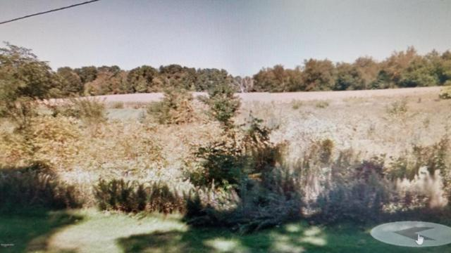 VL E Gull Lake Drive, Hickory Corners, MI 49060 (MLS #18023290) :: 42 North Realty Group