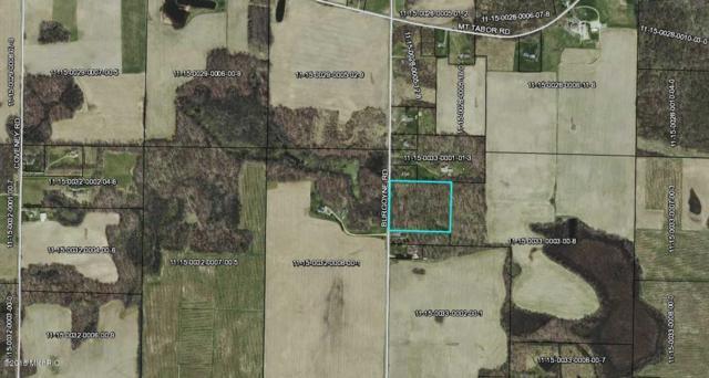 0 Burgoyne Road, Buchanan, MI 49107 (MLS #18023363) :: 42 North Realty Group