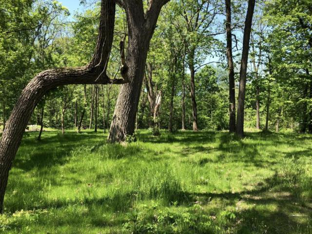 VL S Lagrave Parcel S, Paw Paw, MI 49079 (MLS #18023765) :: 42 North Realty Group
