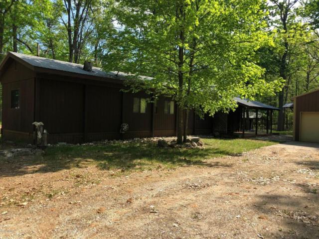 8672 N Bass Lake Road, Irons, MI 49644 (MLS #18023830) :: 42 North Realty Group
