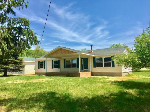 5110 Cedar Lake Road NE, Edmore, MI 48829 (MLS #18023864) :: Carlson Realtors & Development